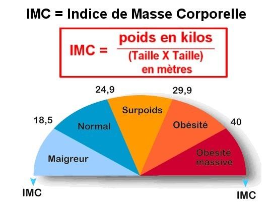 perte de poids par rapport au pourcentage de graisse corporelle perte de poids tx