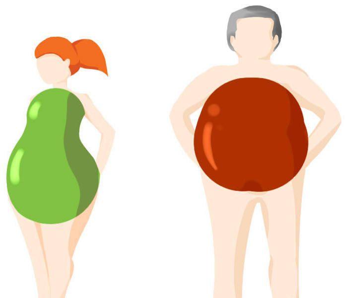 éphédra pour brûler les graisses perte de poids hampton va
