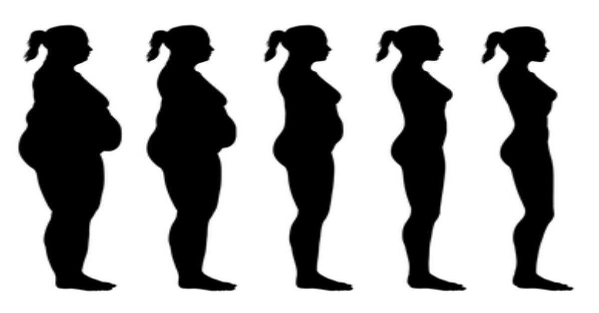 de quoi brûler les graisses dans le corps Conseils de perte de poids ekunji