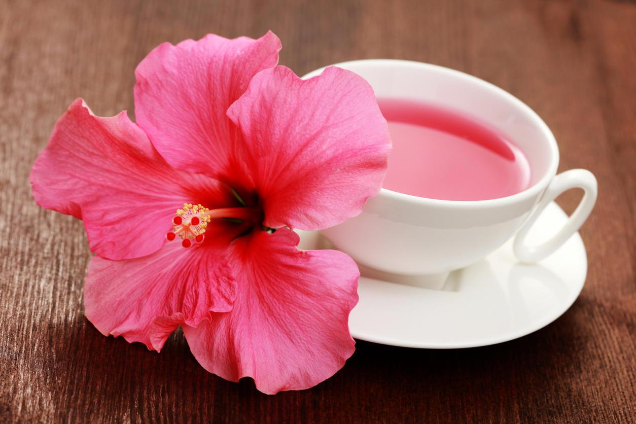 hibiscus pour minceur comment rendre notre corps mince naturellement