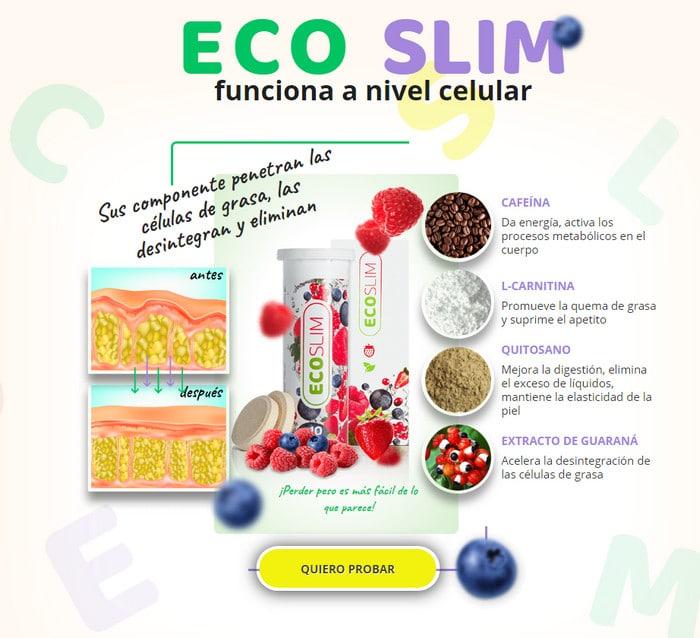 propiedades del eco slim ne peut pas perdre de cellules graisseuses