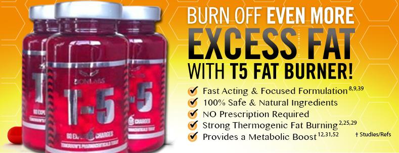 Brûleurs de graisse des laboratoires t5 zion injections de combustion des graisses