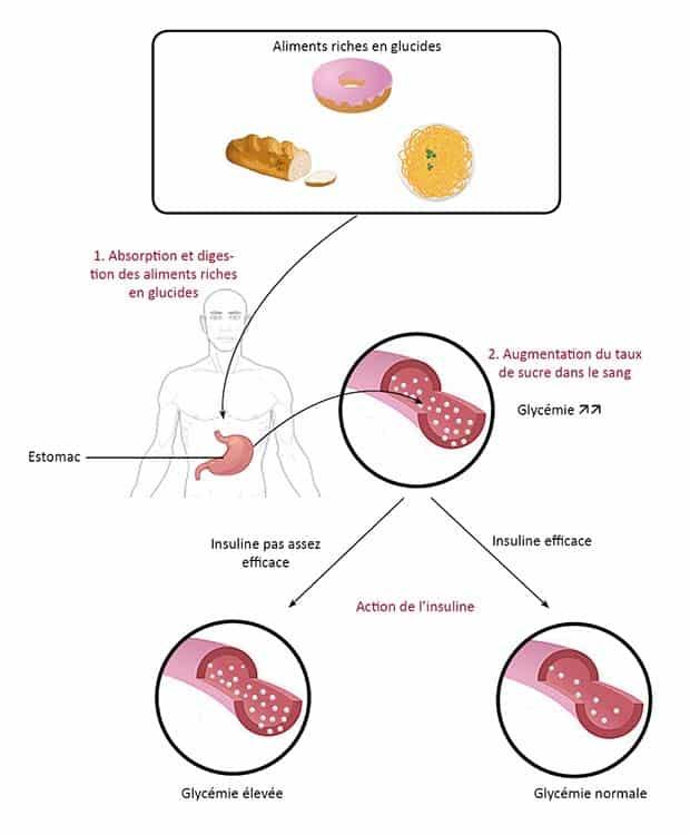 dose de picolinate de chrome pour perdre du poids stratégies de perte de poids pour les adultes obèses