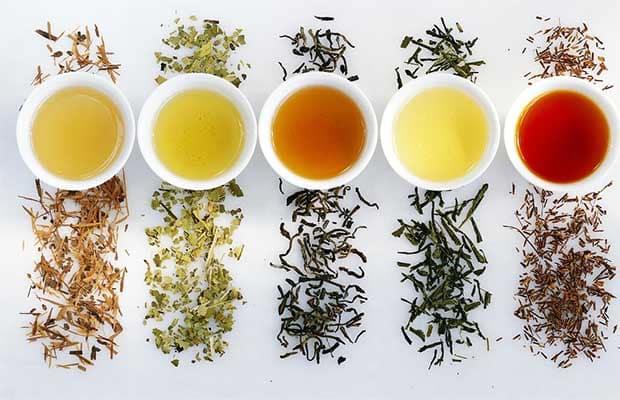 Thé vert minceur : la boisson idéale pendant un régime