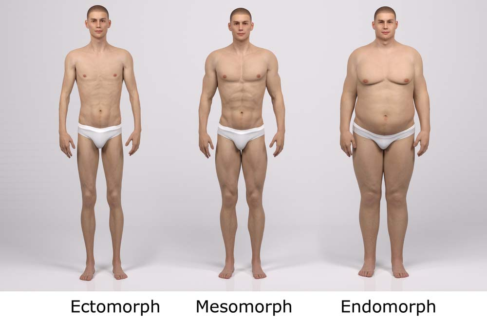 gain de mésomorphe et perdre du poids facilement tuberculose symptômes de perte de poids