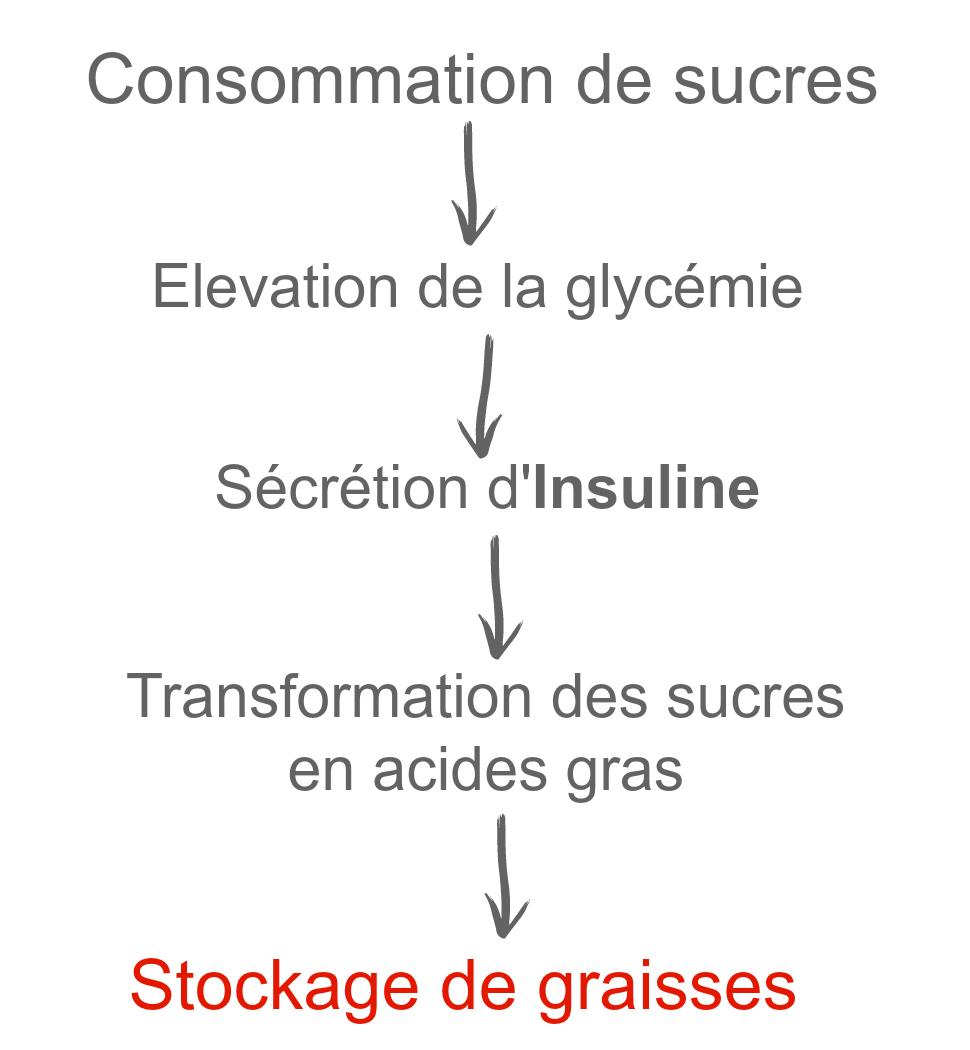 taux de glucose idéal pour perdre du poids