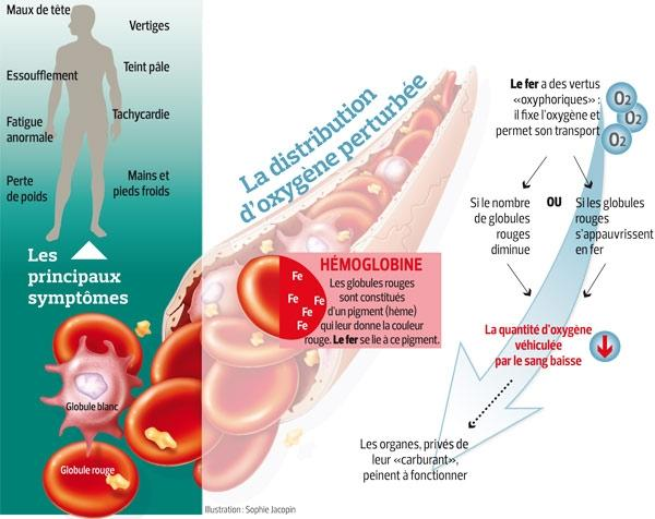 anémie perte de poids personnes âgées