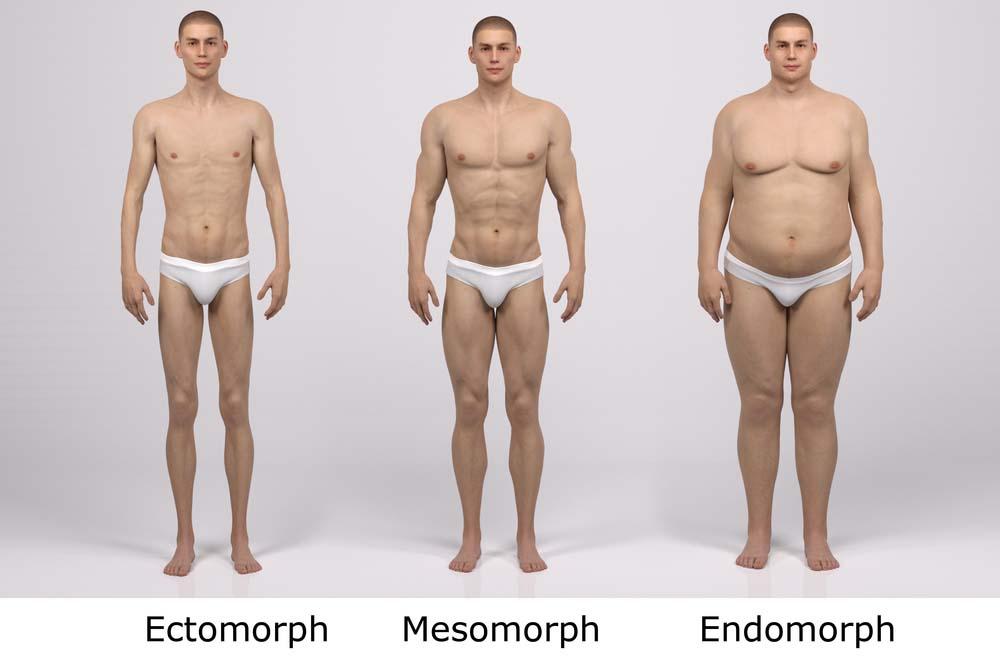 perte de poids maximale 3 mois